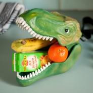 Dinosaur Lunch Box and Storage Case 8