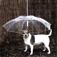 Dog Umbrella 2