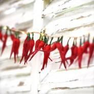 Dried Chilli Pepper Fairy Lights 3