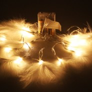 White Feather String Lights  2
