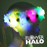 Flower Halo 3 White Flower Halo