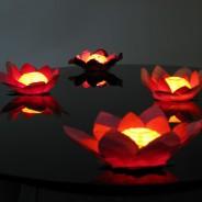 Floating Flower Water Lanterns 7