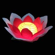 Floating Flower Water Lanterns 4