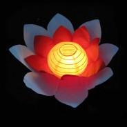 Floating Flower Water Lanterns 8