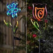 Solar Neon Esque Bloom 1
