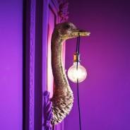 Franz Joseph Ostrich Wall Light 2