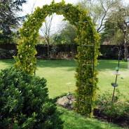 Garden Arch 3