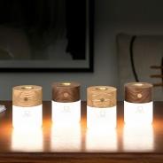 Gingko Smart Diffuser Light  1