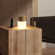Gingko Smart Diffuser Light  4 Light Ash