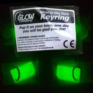 Glow in the Dark Keyring 3