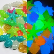 Glow Shells - Mixed 1