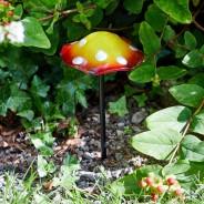 Glow Mini Shrooms (2 pack) 3