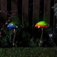 Glow Shrooms 1