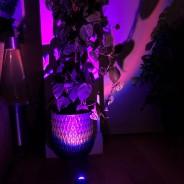 Halo Multi Colour & Effect Sunset Lamp 14