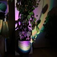 Halo Multi Colour & Effect Sunset Lamp 15