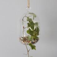 Hanging Oval Glass Terrarium 3