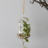 Hanging Oval Glass Terrarium 1