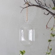 Hanging Oval Glass Terrarium 7