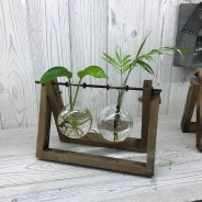 Hydroponic Glass Vases on Wooden Stand 2