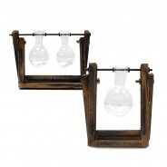 Hydroponic Glass Vases on Wooden Stand 3