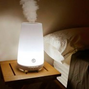 Icarus Humidifier 1
