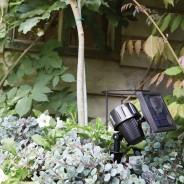 Intelligent Solar Lupi 100 Lumen Spotlight 2