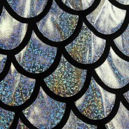 Silver Scale Holographic Jacket 3