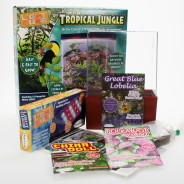 Super LED Tropical Jungle 2