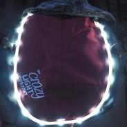 LED Dog Jacket Burgundy 3