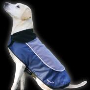 LED Dog Jackets 5