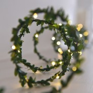 Greenery LED Fairy Light Chain 3