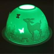 Wonderland w/ Auraglow Light