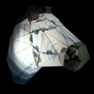Make Your Own Zebra Head Paper Light 2