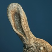 Meister Rabbit Large Table Lamp 3