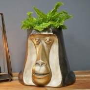 Happy Monkey Head Pot 1