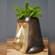 Happy Monkey Head Pot 3
