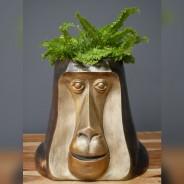 Happy Monkey Head Pot 2