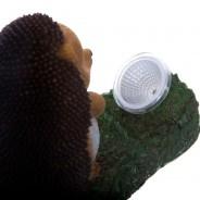 Solar Zombie Nails The Hedgehog 9