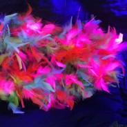 UV/Neon Feather Boa 5 Neon Feather Boa