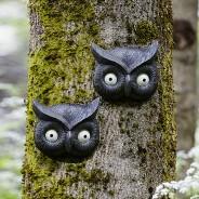 Owl Glow Eye Tree Face 2