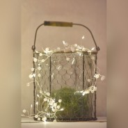 Pearl Cluster Battery Operated Fairy Lights  4