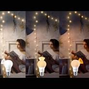 Philips Sceneswitch Bulbs 1
