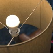 Philips Sceneswitch Bulbs 3