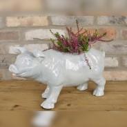 Pig Planter 1