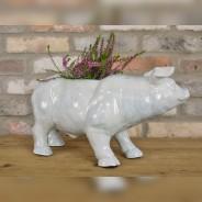 Pig Planter 2