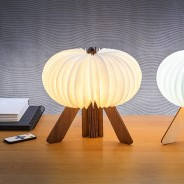 Gingko R Space Rechargeable Lamp 4 Walnut