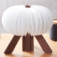 Gingko R Space Rechargeable Lamp 8 Walnut