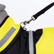 Safety Flash Dog Coat 2