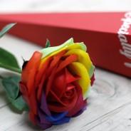 Rainbow Rose Soap in Presentation Box 3