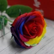 Rainbow Rose Soap in Presentation Box 1